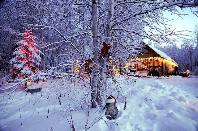 Christmas in Alaska ~K | North to Alaska! | Pinterest | Alaska