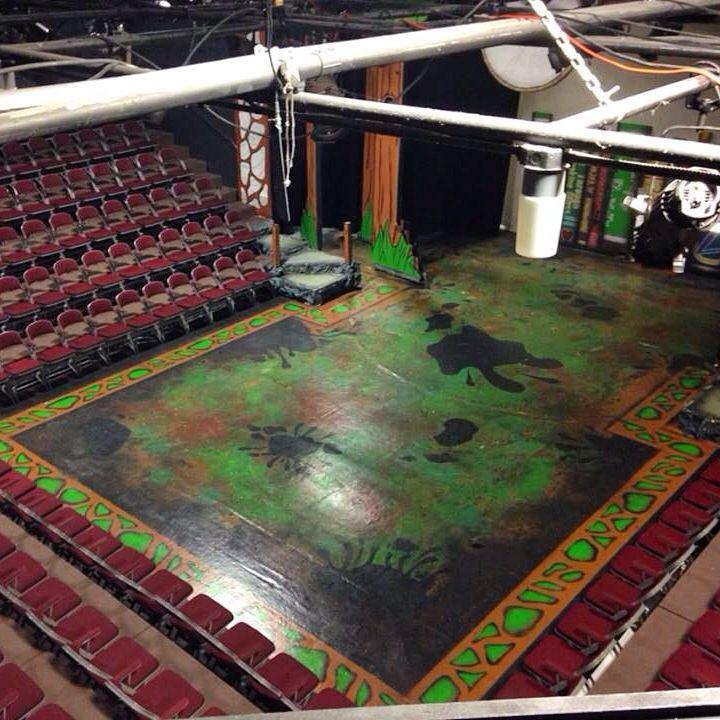Shrek The Musical Set Design Floor Paint