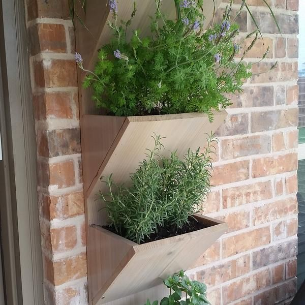 living wall planter wall planter box herb garden etsy in on indoor herb garden diy apartments living walls id=94310