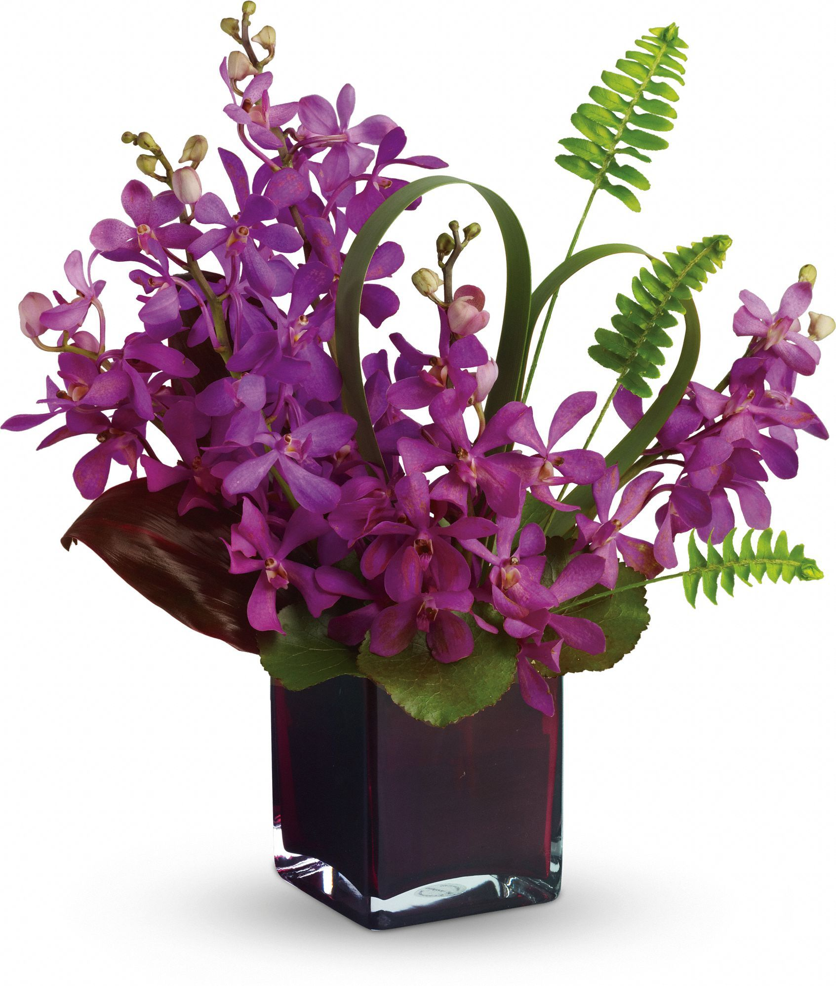 Teleflora's Island Princess Save 25 on this bouquet and