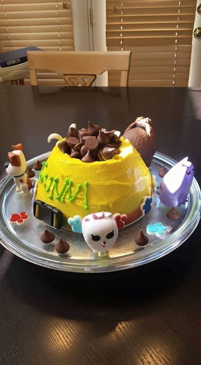 Secret life of pets birthday cake for my daughter its a dog bowl
