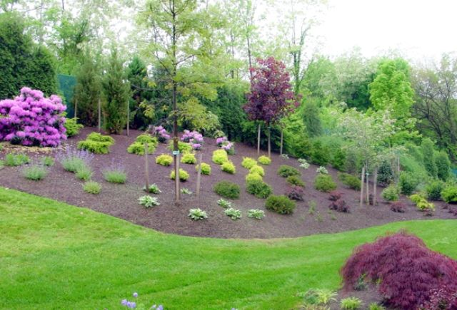 Easy Front Yard Landscaping Yard Landscaping Landscaping Supplies Front Yard Landscaping Design