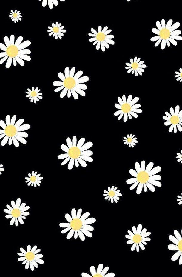 Backgrounds Cool Cute Flowers Girl Iphone Tumblr Wallpaper Bunga Daisy Ilustrasi Vektor Gambar