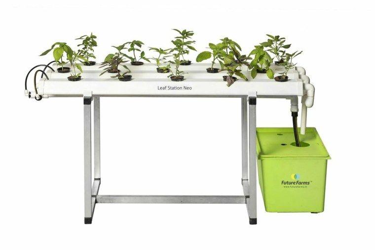 Formas Alternativas De Cultivo Sistemas Acuaponicos Hidroponicos Y Aeroponicos Cultivos Hidroponicos Agricultura Sostenible Y Siembras