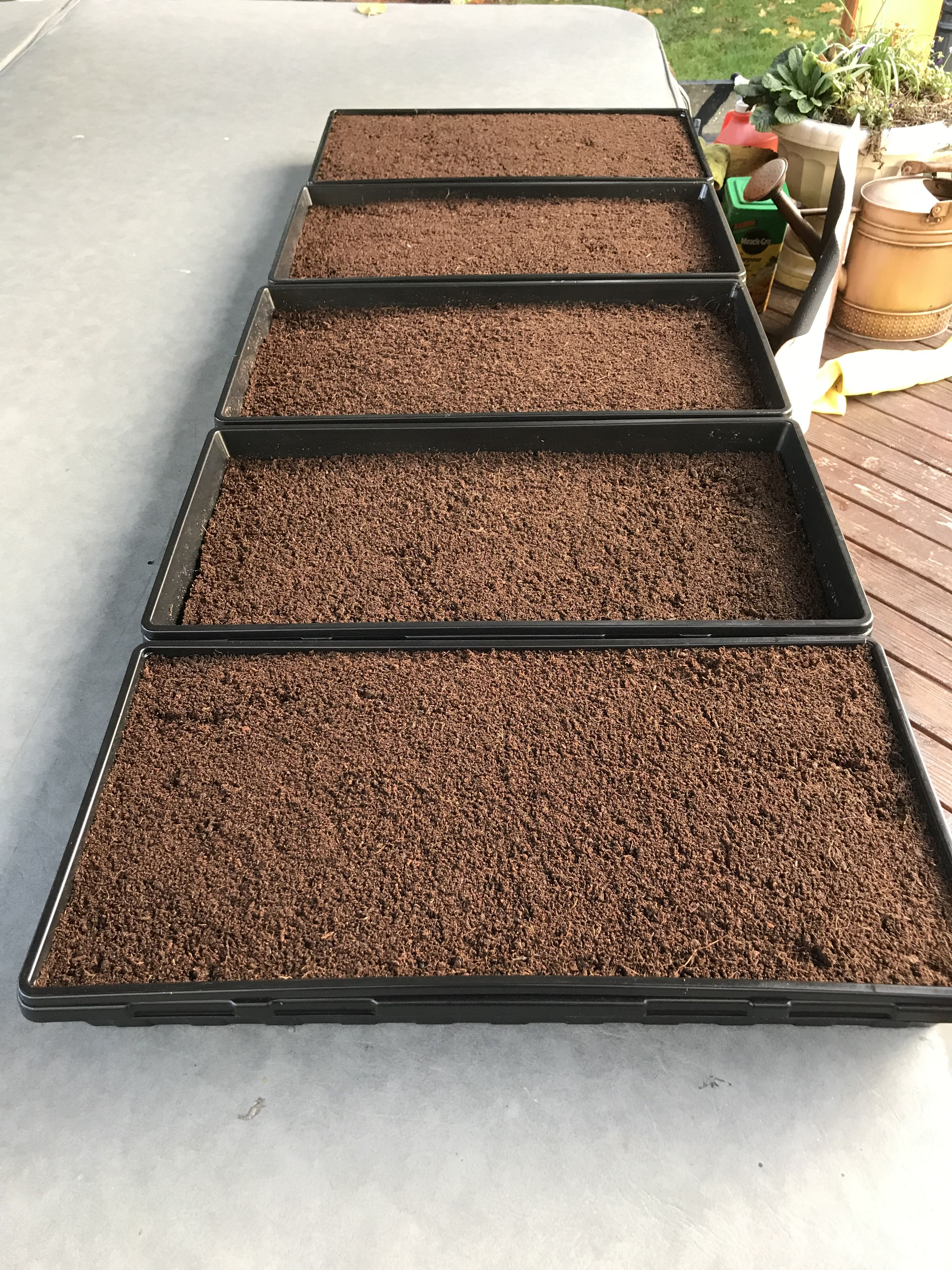 Coco coir and peat moss mix | Microgreens | Peat moss, Coir