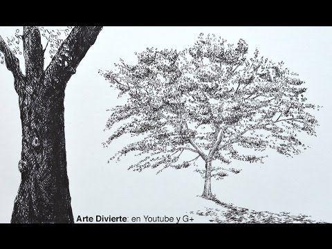 Dibujando Arboles Como Dibujar Un Roble Con Marcadores Arte Divierte Dibujos De Arboles Como Dibujar Arboles Como Dibujar Cosas