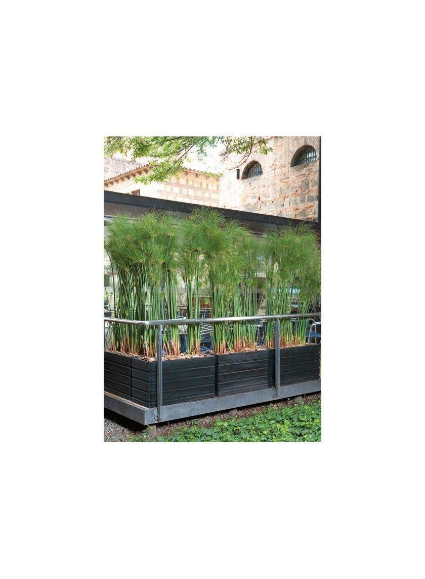 Ellis Caviar Black Lightweight Weatherproof All Weather Rectangular Planter  Pots Manhattan New York Indoor Outdoor Lawn