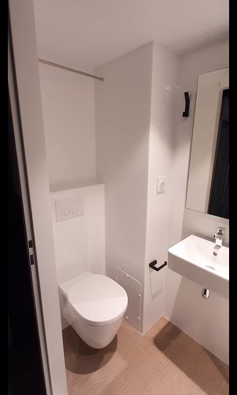 Salle De Bain Prefabriquee 3 Fonctions Douche Vasque Wc Module Sanitaire Sb18 Plastima In 2020 Small Bathroom Layout Bathroom Design Small Small Space Bathroom