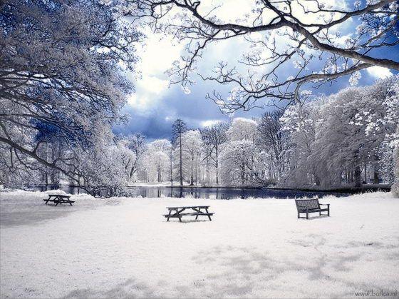 Winter Wonderland Beautiful Infrared Photography By Maria Netsounski Infrared Photography Winter Photography Summer Landscape