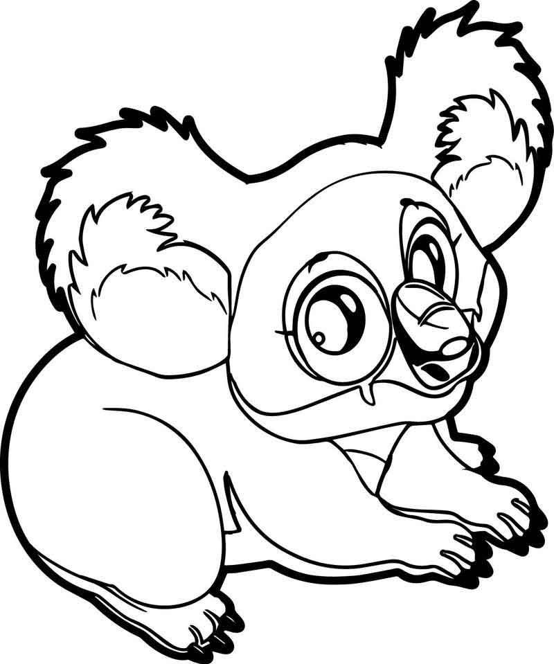 Marsupial Koala Coloring Page Bear Coloring Pages Animal Coloring Pages Coloring Pages