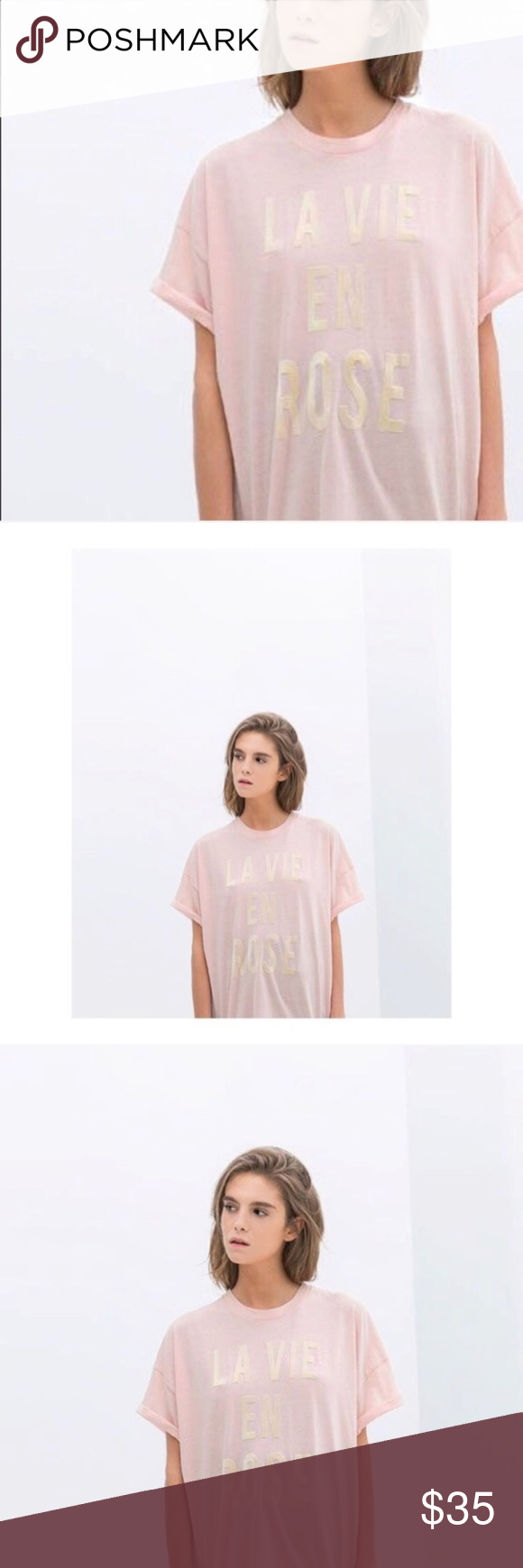 5d50d46038d66 Zara] La Vie En Rose Tee - Limited Tee in 2018 | My Posh Closet ...