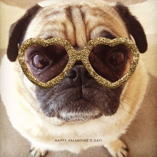 Pugly Pixels Lots Of Great Photoshop Tools And Freebies Pugs