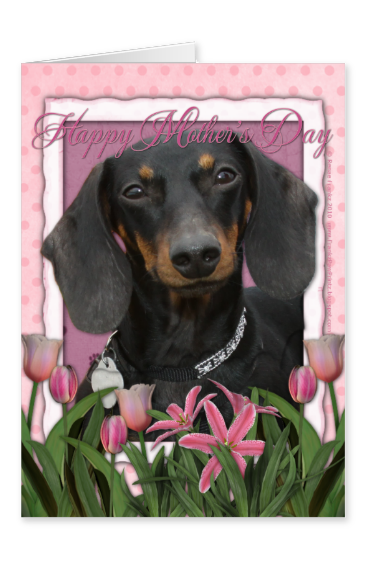 Pink tulips and dachshund Mother's Day card.