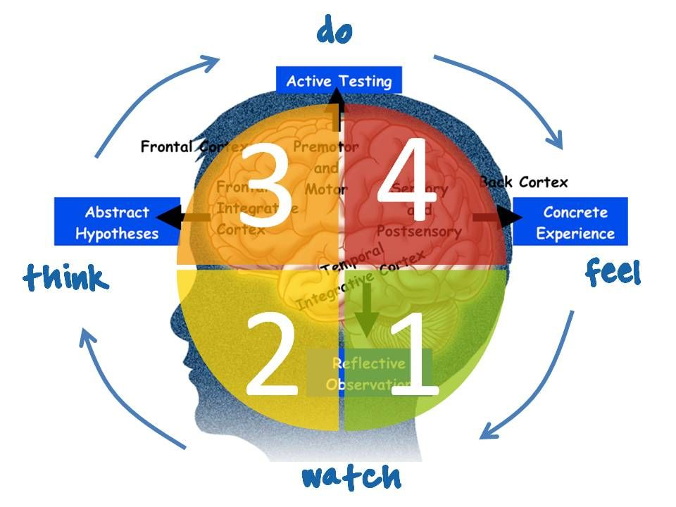 Learning Styles using 4MAT | Learners! - Tell Me More? | Pinterest ...