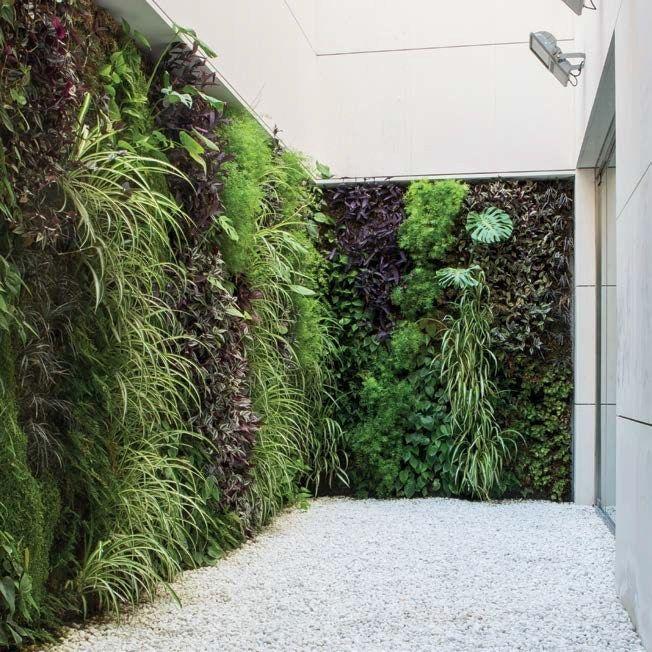 Giardino verticale per esterno life panella pinterest - Moduli per giardino verticale ...