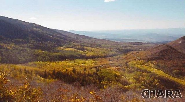 TBD Bonham Road, Collbran, CO 81626 #remax #realestate #land
