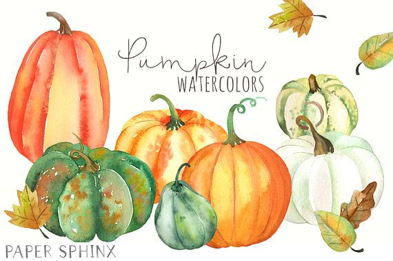 Watercolor Pumpkins Clipart Fall Clip Art Pumpkins And Leaves