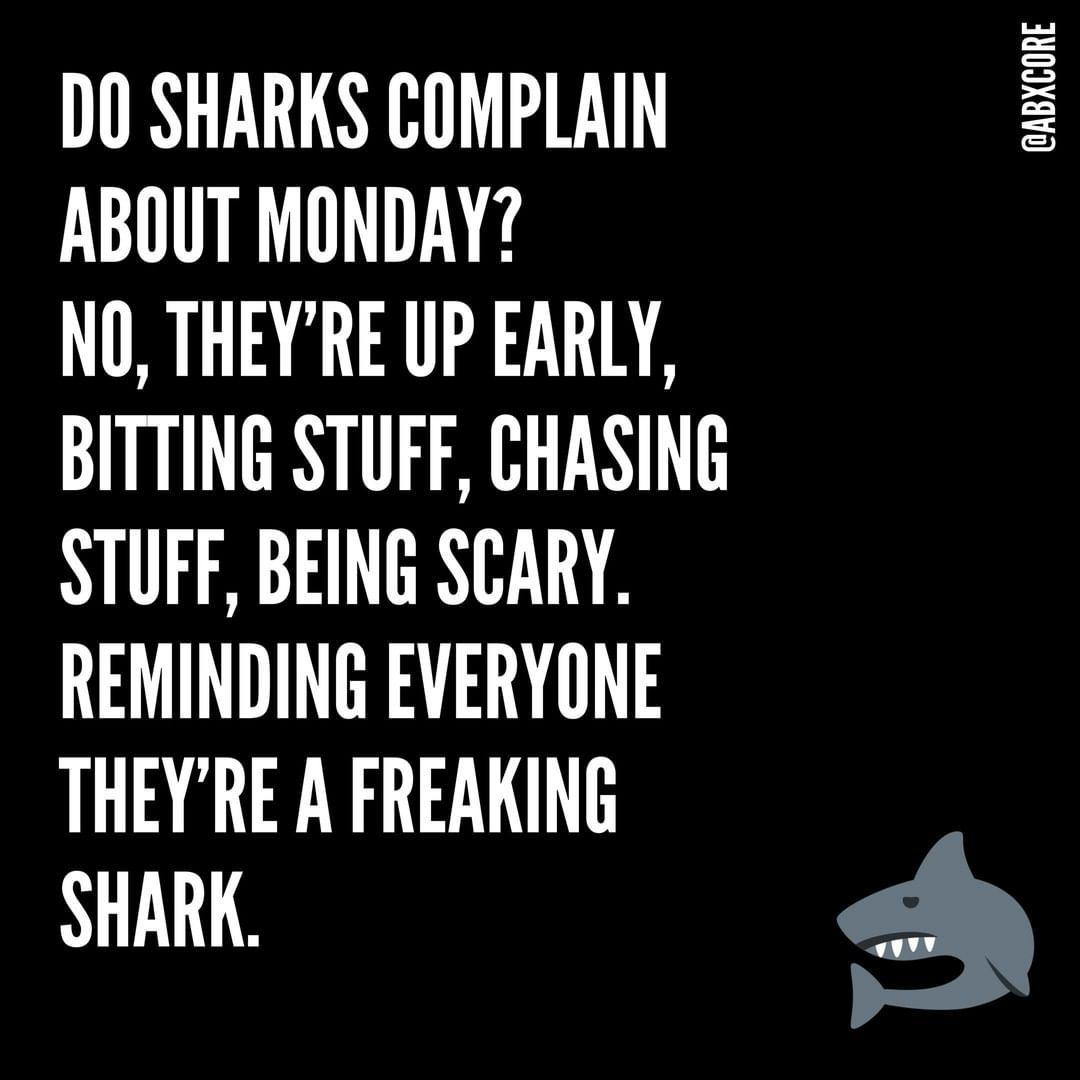 Be a shark 🦈 my friends! #HappyMonday . . . . . . . #mondaymood #sharktank #monslay #fitnessmotivati...