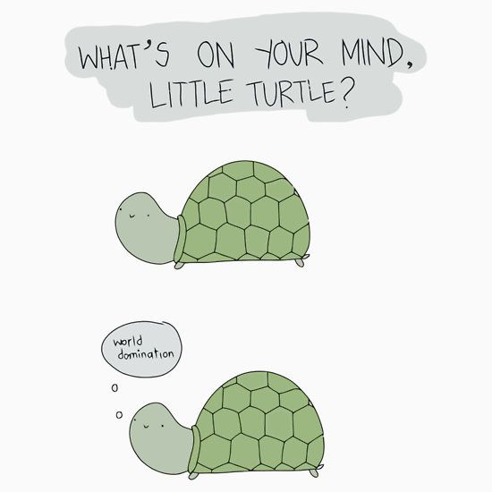 Little Turtle World Domination T Shirt By Elites Turtle Quotes Turtles Funny Cute Quotes