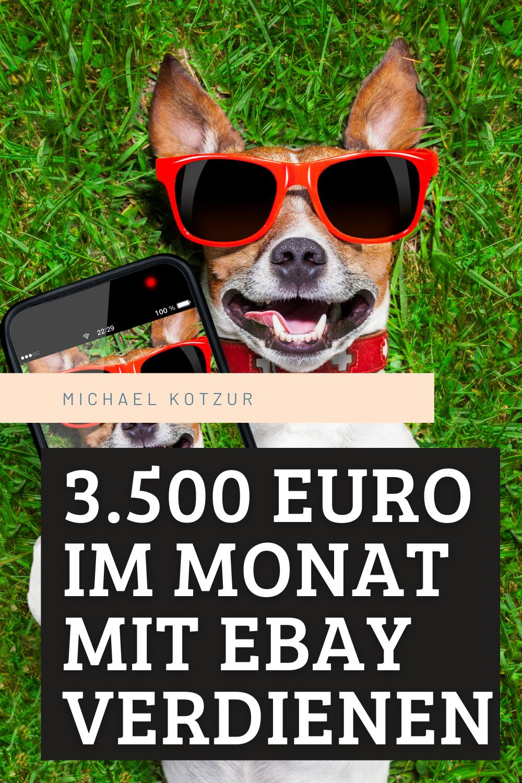 20.20 EURO IM MONAT MIT EBAY VERDIENEN in 20   Online geld ...