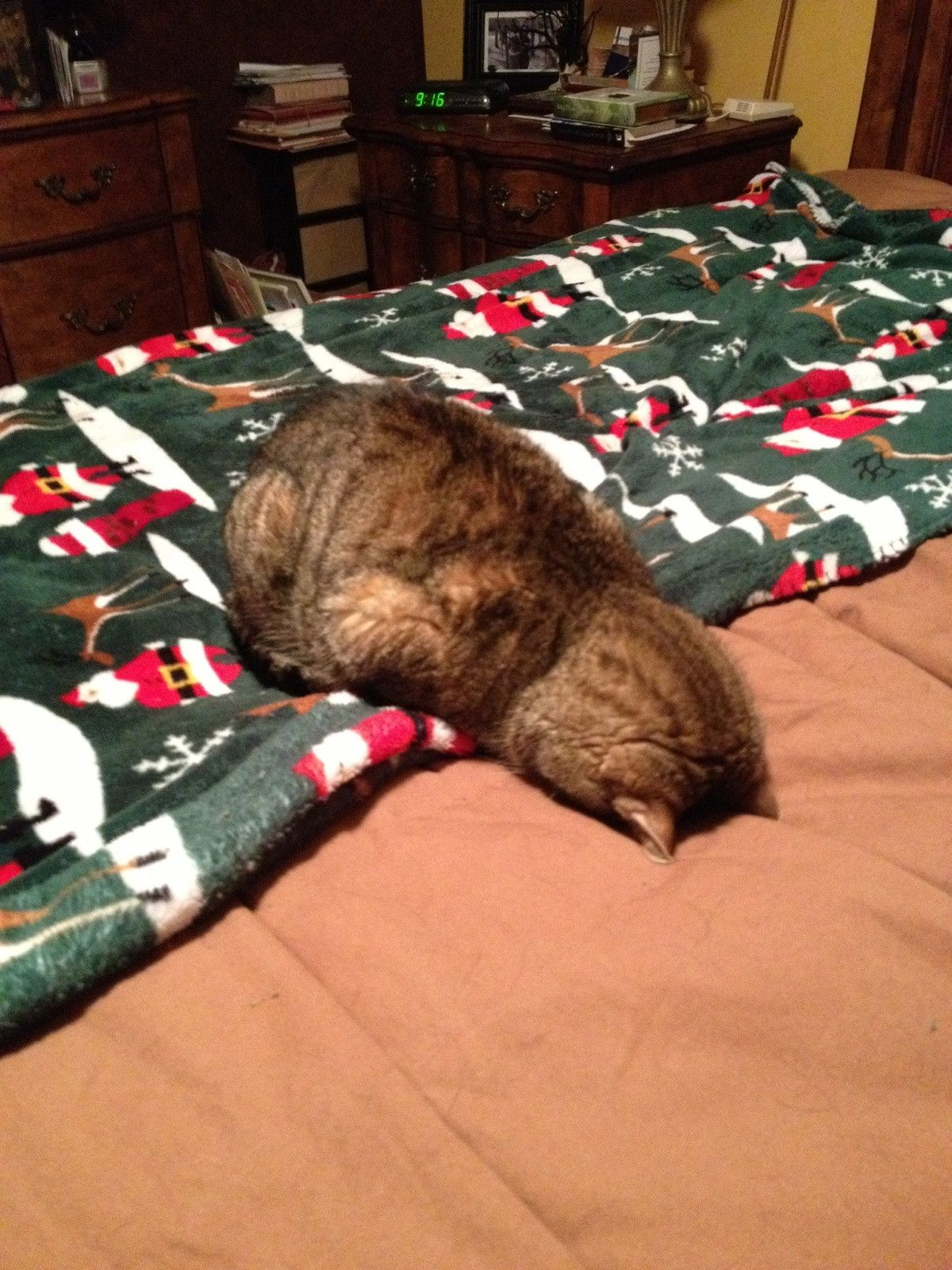 don't wanna get up