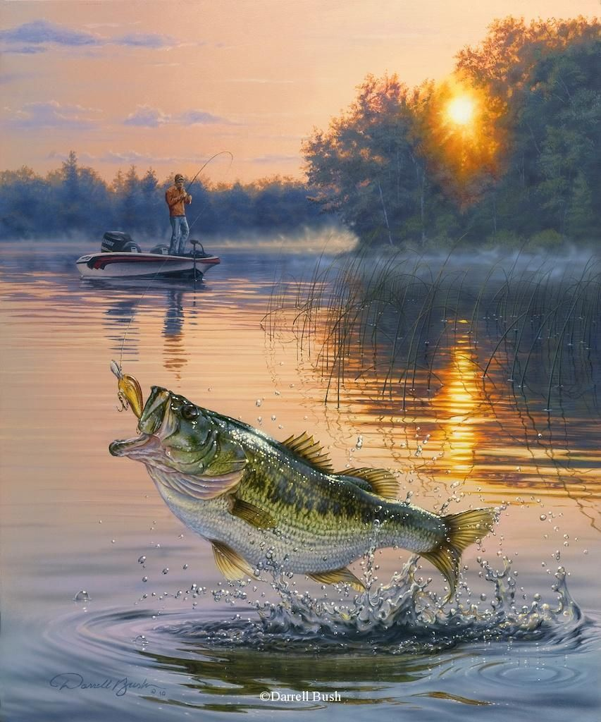 Sugartree 12 x 12 paper early catch paintings fish for Bass fish painting