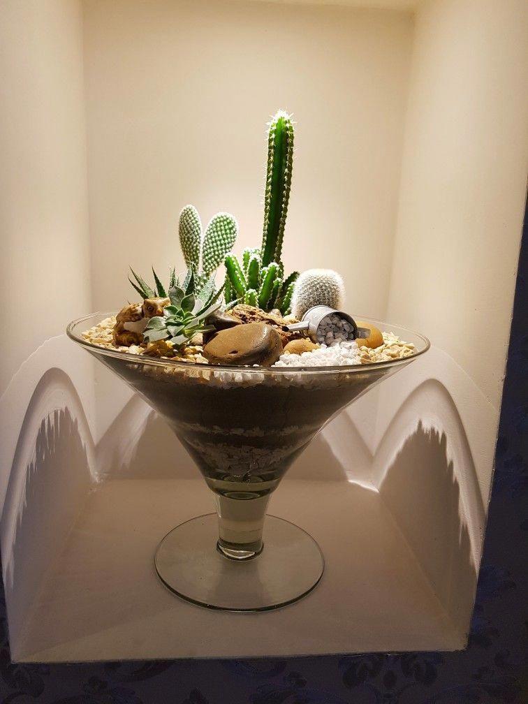 Cactus Flower Cafe Menu Cactusflower Mini Cactus Garden Flower Cafe Cacti And Succulents