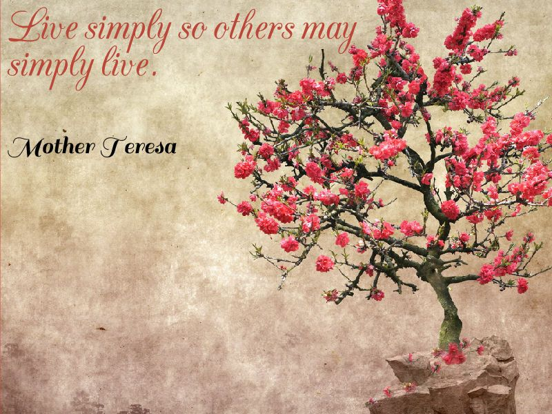 Image result for live simply quote by mother teresa