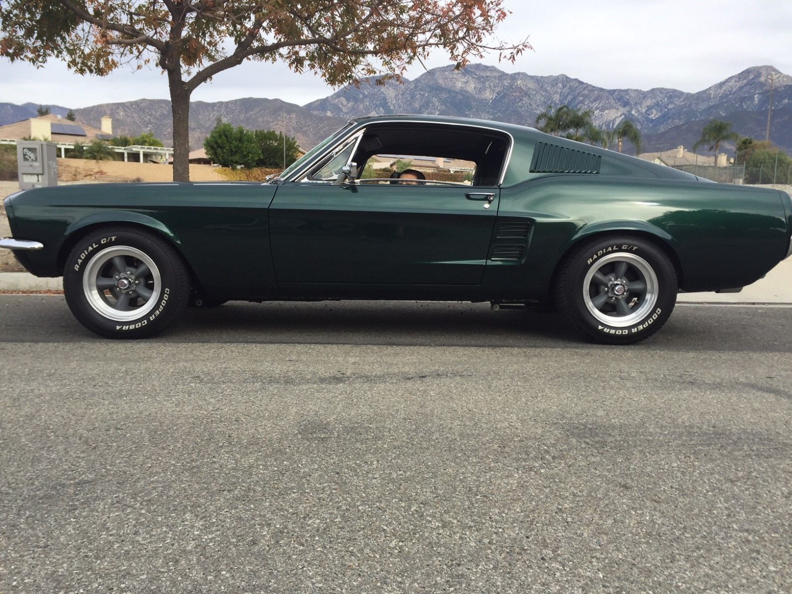 1967 Ford Mustang Fastback Gt Classic Cars Muscle Cars Classic
