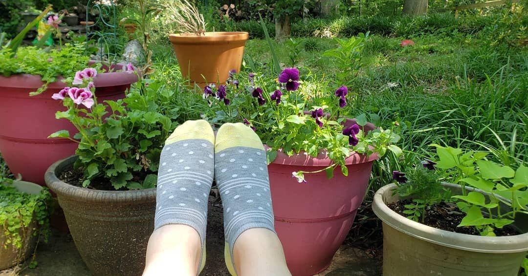 Enjoying the some outdoors today. #socks #socklife #socksgalore #sockalicious #sockaholic #sockcollector #sockcollection #socksofinstagram #socksoftheday #agirlandhersocks #funsocks #cutesocks #sockadventures #stripedsocks #stripes #greysocks #anklesocks #girlsocks #flowers Cute socks | Cool socks | Sock shoes | Crazy socks | My socks | Happy socks | Winter | Girl | High | Leggings | Funny | Fuzzy | Pattern | Forever 21 | Crew | Ideas | Fall Outfits | Korean | Urban Outfitters | Kawaii | Tumblr