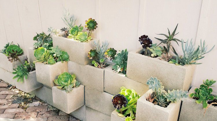 jardini re b ton diy en parpaings creux 2 alv oles et. Black Bedroom Furniture Sets. Home Design Ideas