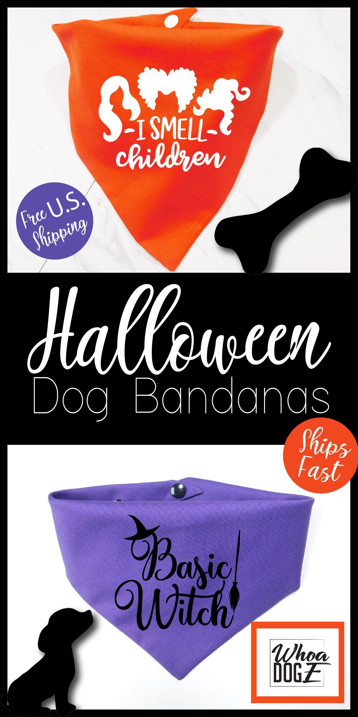 Halloween is right around the corner! Raise your hand if
