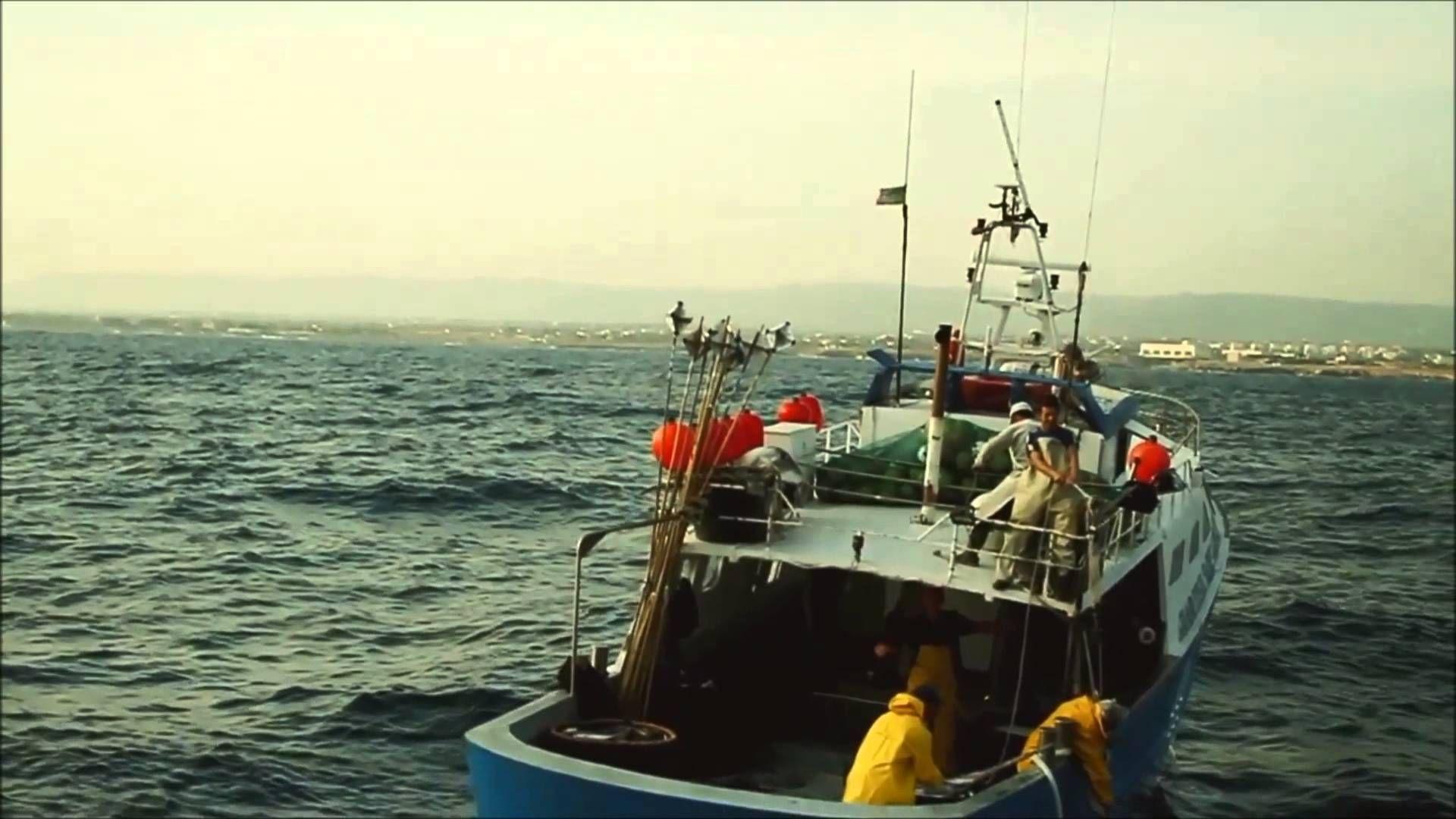 Soluções IBM Cloud - Bari Fishing Industry