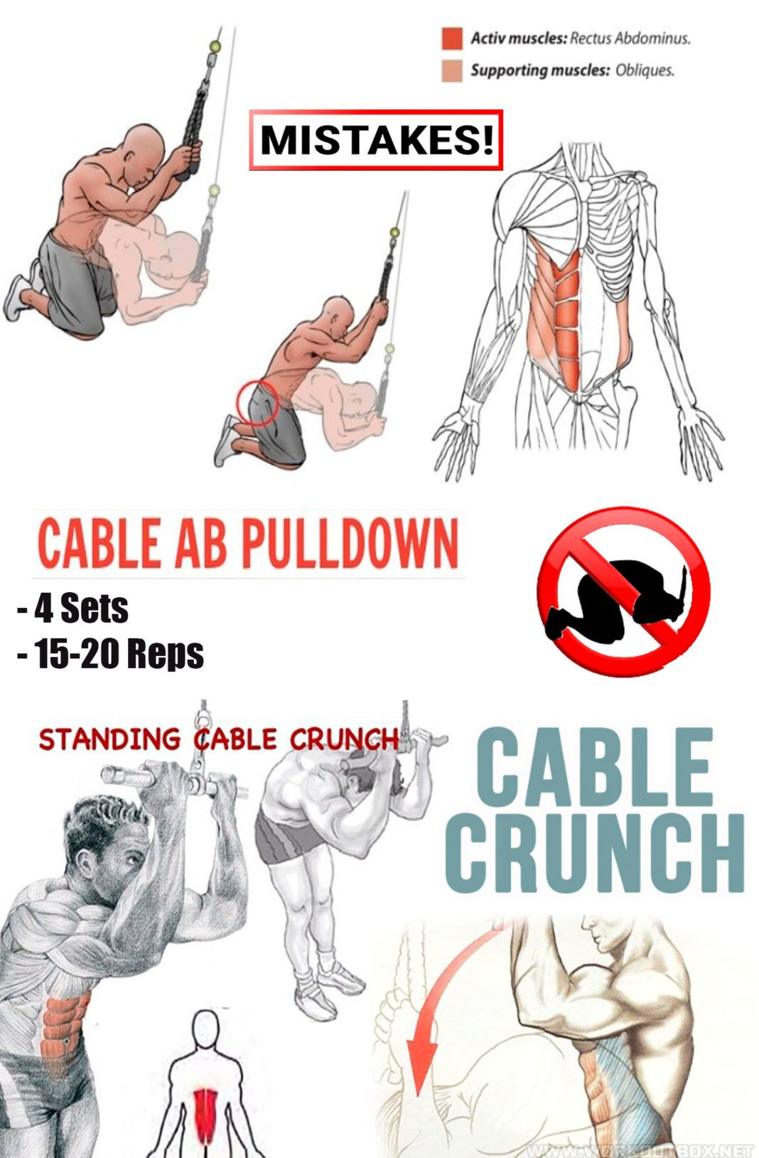 Cable Crunches Abs Workout Cable Crunch Six Pack Abs Workout