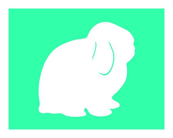 Bunny lop. Holland silhouette good negative