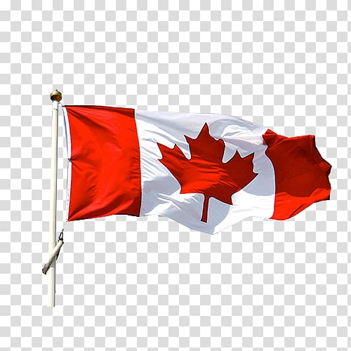 Flag Of Canada Art Ontario Department Of Justice Flag Of Canada Canada Day Canadian Flag Transparent Background Png Clip Canada Flag Canada Art Canadian Flag