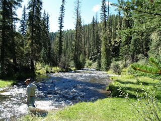 West Fork Of The Black River Best Places To Camp Places To Go State Parks
