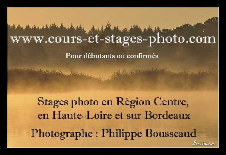 stages photo Aquitaine,  stages photo Haute-Normandie,  stages photo Centre, stages photo Auvergne