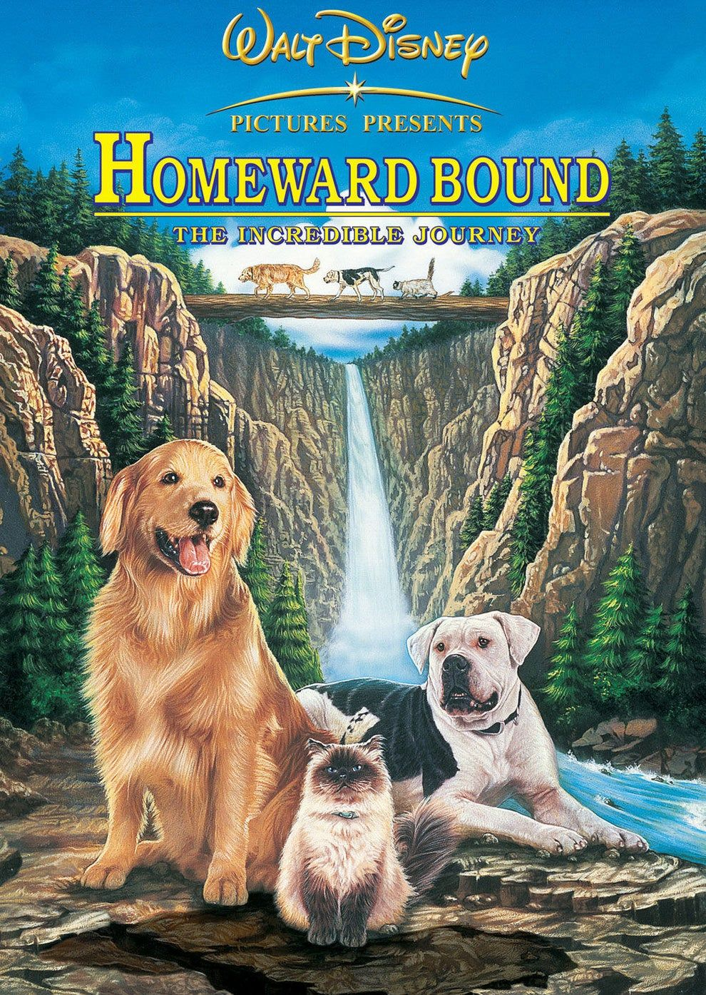 50 Movies You Forgot You Watched On Repeat As A Kid Disney Live Action Films The Incredibles Homeward Bound Movie