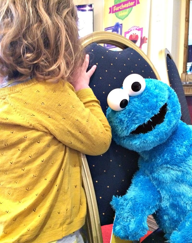 144af8ba57f Cookie Monster toy from the Furchester Hotel