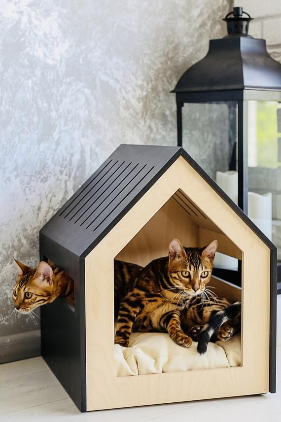 Modern Dog And Cat House Dog Bed Cat Bed Wooden Pet Etsy Cat Houses Indoor Modern Pet Furniture Cat House