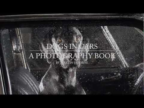 The Silence of Dogs in Cars by Martin Usborne (Archive)