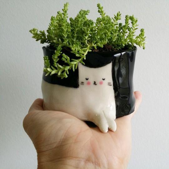 Little Alien Plants Potted Plants Ceramics