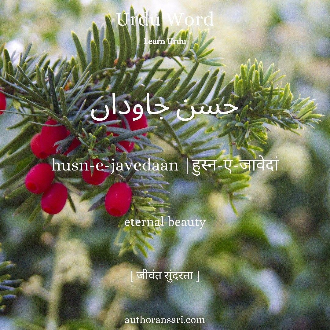 हुस्नएजावेदा means in 2020 Urdu words, Words