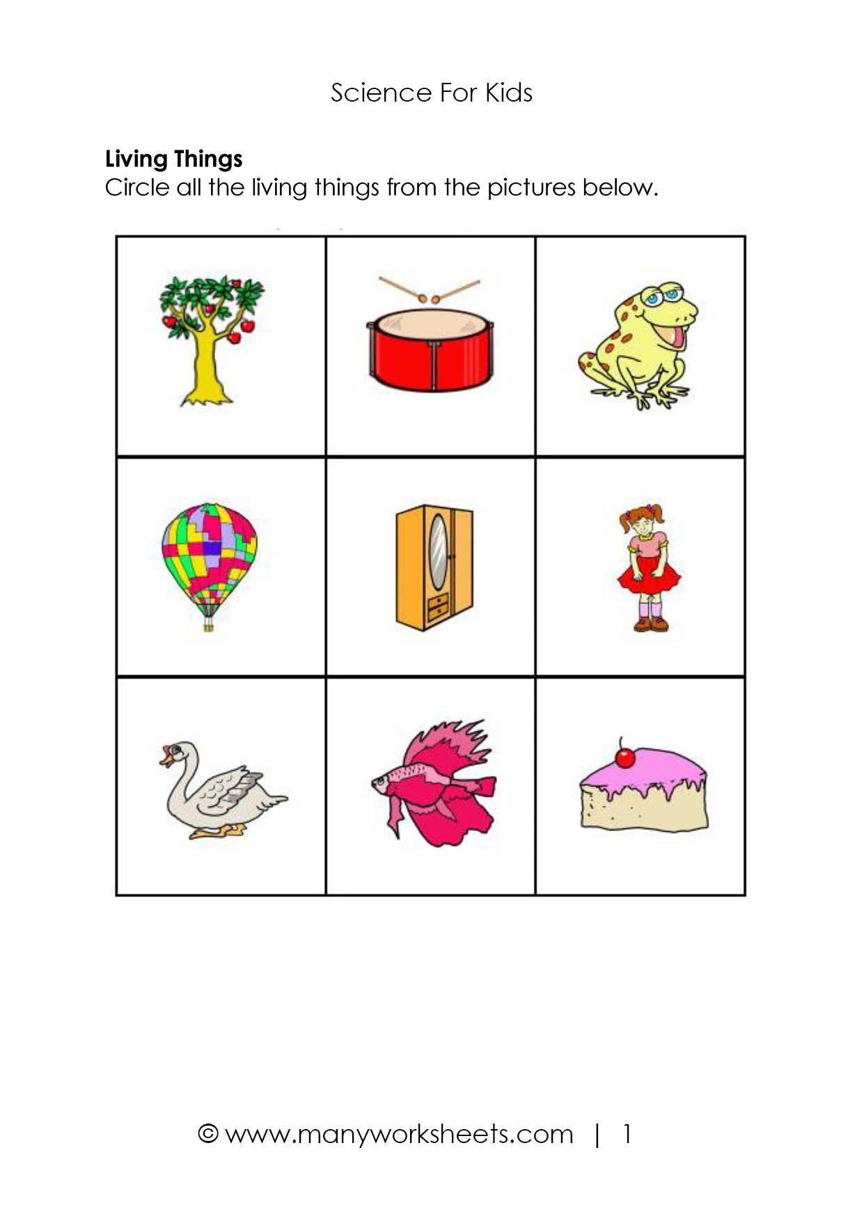 Free Science Worksheet Preschool Pictures