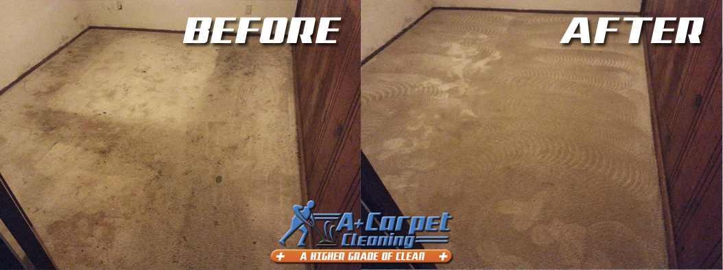 Professional Truck Mount Carpet Cleaning Before And After Shoot 54 For A Plus Carpet Cleanin How To Clean Carpet Carpet Cleaning Company Carpet Cleaning Hacks