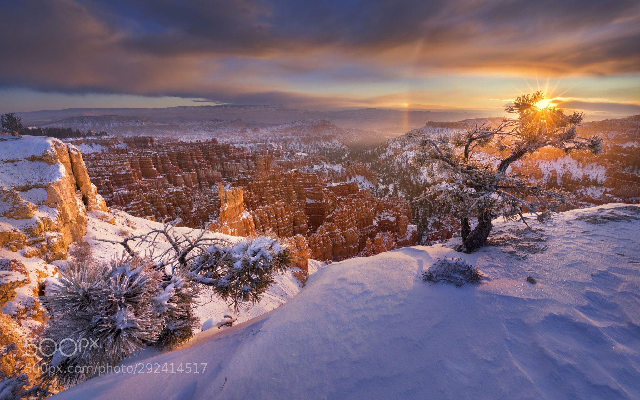Landscape Photgraphy Love Passion Eye Photo Nature Beautiful Sky Earth Tree Day Trips National Parks Trip One Day Trip