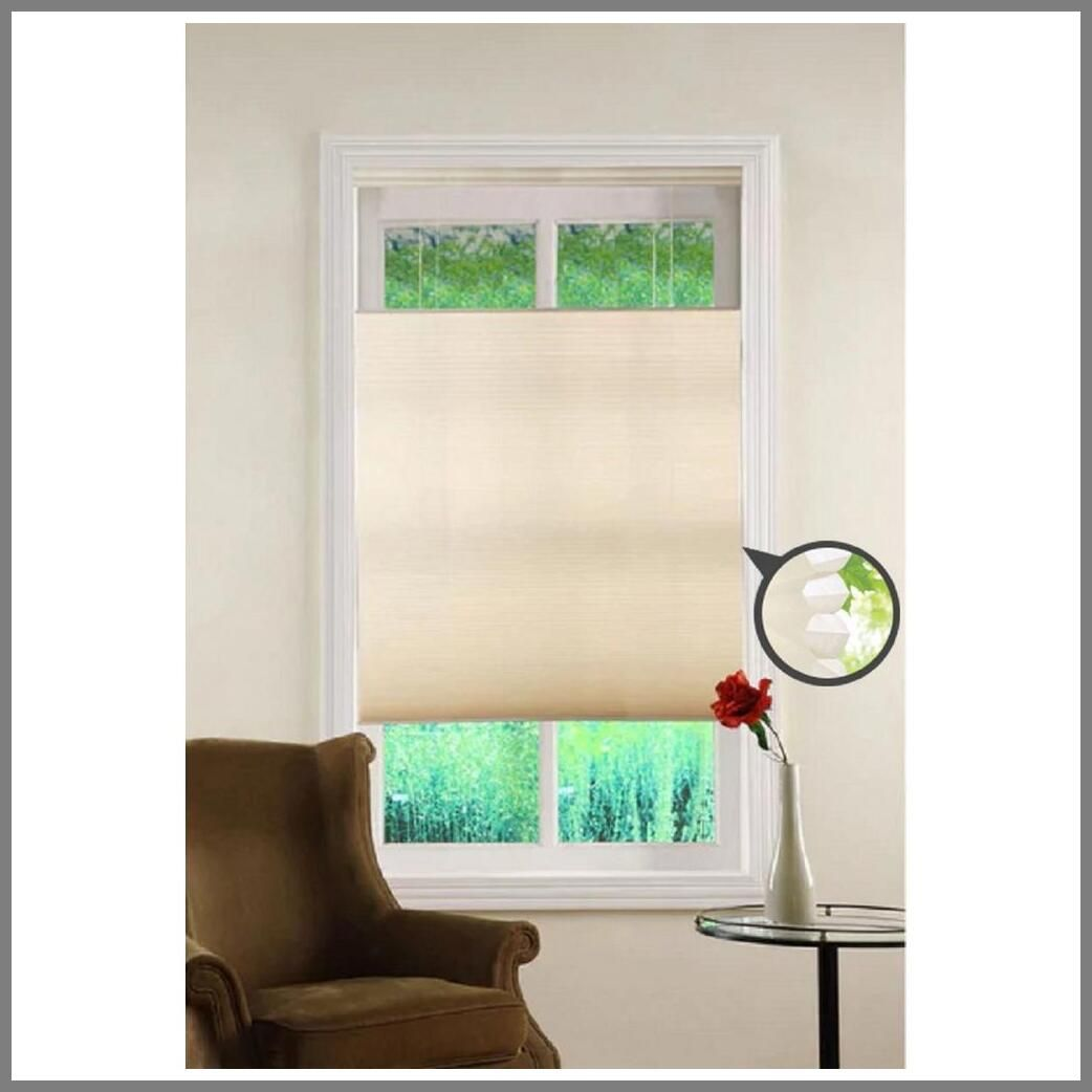 117 Reference Of Cordless Blinds Bottom Up Top Down In 2020 Cordless Cellular Shades Cellular Shades Shades Blinds