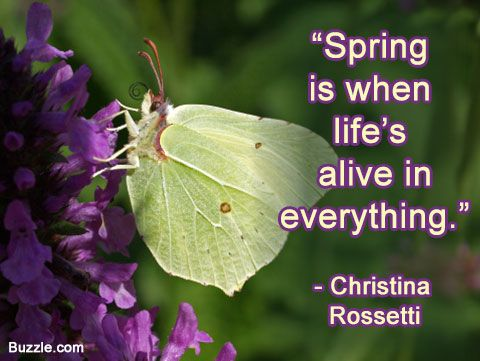 Ten of the Best Spring Quotes - FineGardening