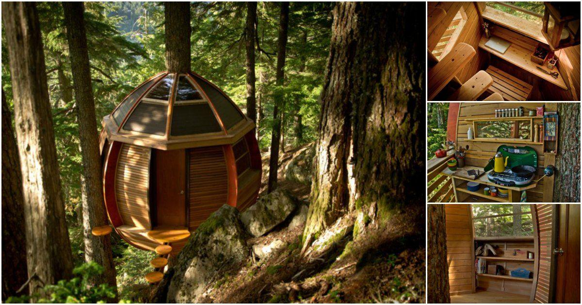 Good Mann Baut Geheimes Kleines Baumhaus Auf Kronen Land In Whistler, Kanada   Dekoration  Ideen 2018